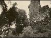 1938_-_sn_mek_po__zen__p_ed_rokem_1939